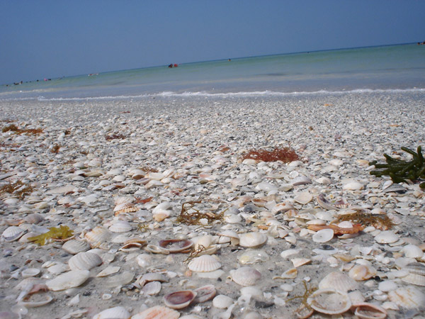 Gulf Blvd Indian Rocks Beach Florida