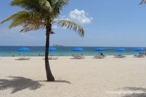 Perfect Florida Beach Wallpaper Relaxing Tropical Beach Wallpaper