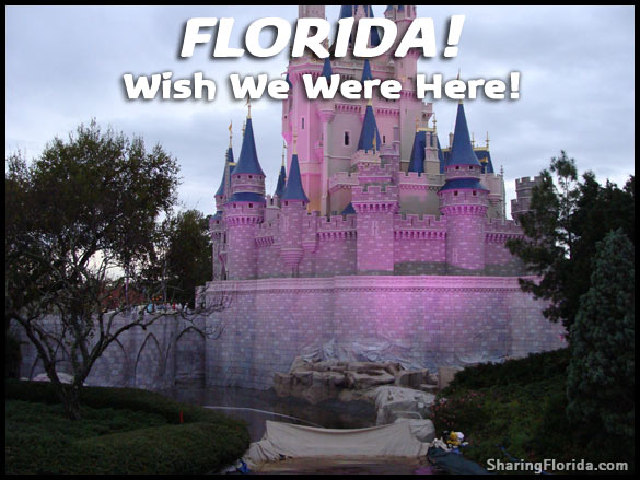 magic kingdom castle florida. Disney World Magic Kingdom