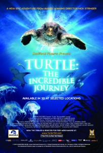 Turtle – The Incredible Journey