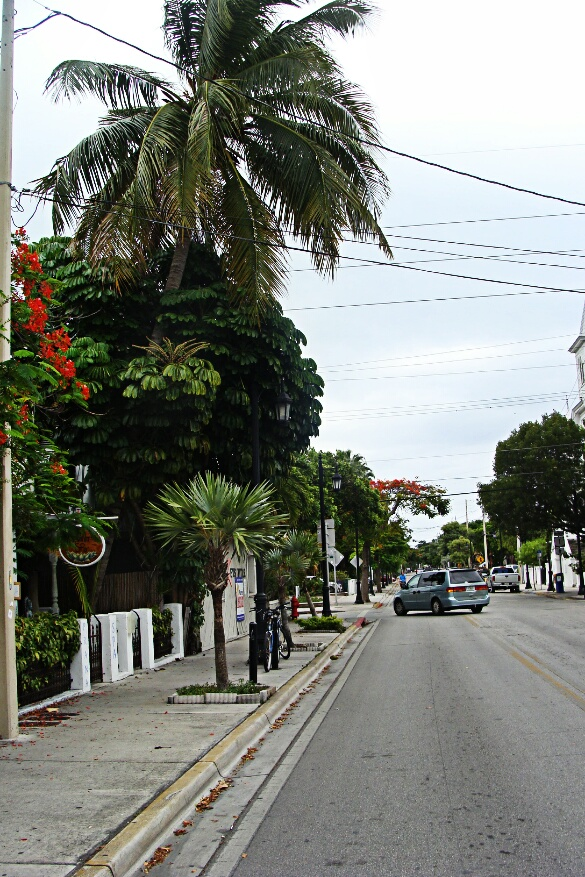 wpid-Key-West-Aug-27-28-2014-381.jpg