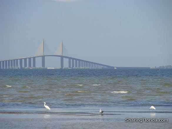 sunshine skyway bridge,